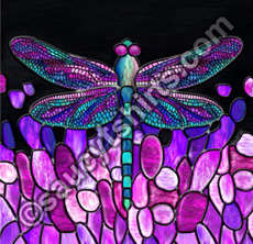 dragonfly illustration by Chris Petsos