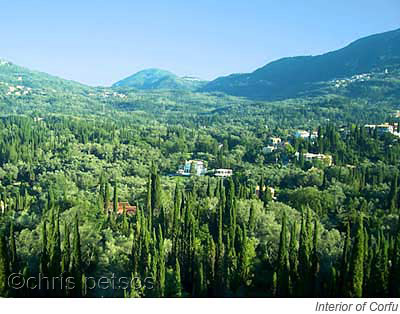 corfu countryside forested